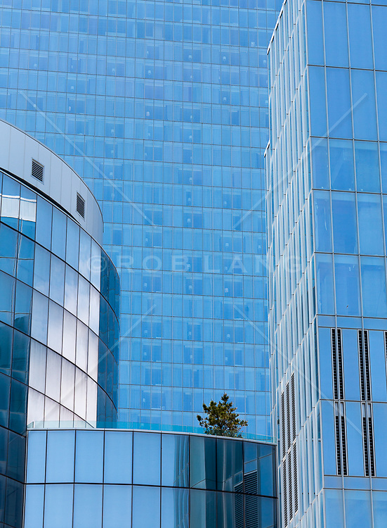 glass building and a lone tree in New Jersey