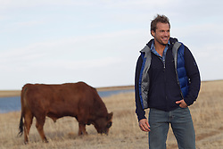 bull grazing in a field while a man stands nearby smiling