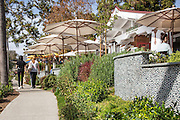 Urth Caffe at the Cottage Laguna Beach