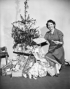 Mrs. Mairead Kenny (nee Colgan) with a Christmas tree at the office..24.12.1959