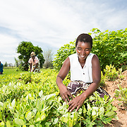 MALAWI (European Union) – Avenues to Empowerment and Resilience