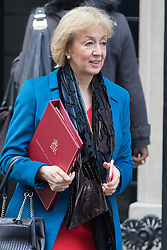 Downing Street, London, February 7th 2017. Environment, food and Rural Affairs Secretary Andrea Leadsom leaves 10 Downing Street following the weekly UK cabinet meeting.