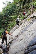 David Reuger, Theresa Meacham, Rosa Maria Roman-Cuesta and William Nauray climb up a sloping rock searching for orchids