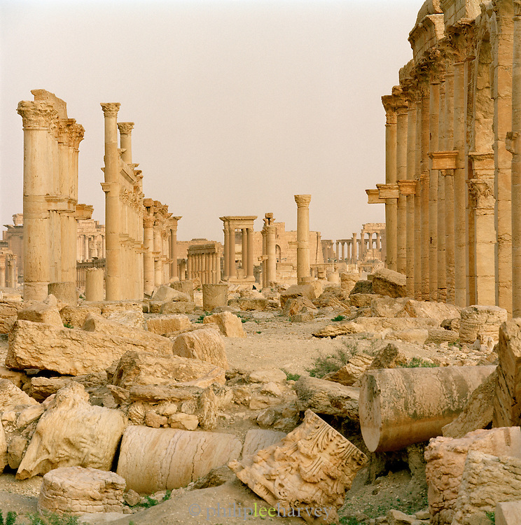 Roman ruins at the ancient city of Palmyra, Syria