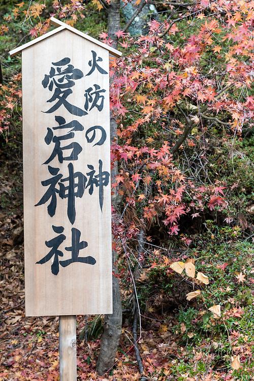 Shinjuku,Tokyo,Japan,Asia,Sign,Writing