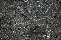Fresh compost at Farnsfields Materials Management; Manchester,