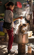 Vietnamese woman cooking whole duck, Thuan Chau market, SON LA-DIEN BIEN PROVINCE , Northern Vietnam