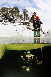 split shot from ice diving, ice diver doing rope signals under ice, Russia,  White Sea, MR