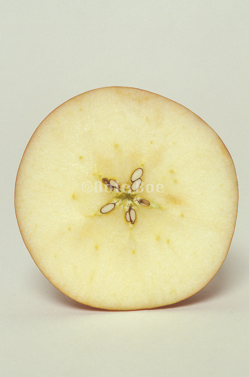 cross section of a apple