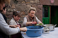 Some women add parsley to the blood to make blood sausages in traditional way pig slaughtering.  Doneztebe (Basque Country). December 08. 2016. The slaughter traditionally takes place in the autum and early winter and the work often is done in the open. (Gari Garaialde / Bostok Photo)