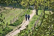 Nederland, Ubbergen, 14-4-2020  Lente op het parcours van de walk of wisdom, een pelgrimsroute door het rijk van nijmegen . Wandelaars lopen door de Elysese velden, onderdeel van een stuwwal uit de ijstijd . Vanwege het coronavirus moeten ook zij anderhalve meter afstand tot elkaar houden .Foto: Flip Franssen