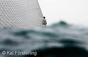 V. 12. Valencia, 05/04/2007. El proa del barco suizo Alinghi durante el tiempo de espera antes de suspenderse las dos regatas del acto 13 de la Copa Louis Vuitton previstas para hoy por falta de viento. EFE/Kai Försterling