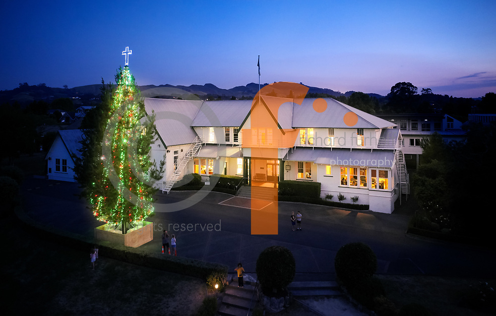 Hereworth Christmas Tree