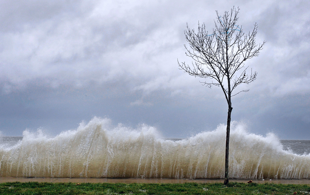 Storm surge hits a small tree as winds from Hurricane Sandy reach Seaside Park in Bridgeport, Conn. Water from Long Island Sound spilled into roadways and towns along the Connecticut shoreline Monday, the first signs of flooding from a storm that threatens to deliver a devastating surge of seawater. (AP Photo/Jessica Hill)