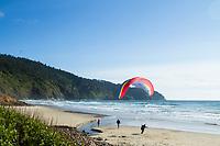 Paragliding over Cape Lookout along the Oregon Coast.