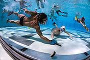 Underwater hockey tournament at Santa Clarita Aquatic Center in Santa Clarita, Calif., hosted by the Los Angeles Underwater Hockey Club on Saturday, May, 1, 2010. (Photo © Adam Lau   www.adamlauphoto.com)