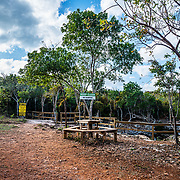 Near the entrance of Sapphire blue hole, on North Eleuthera Island the trees have been replaced with a parking lot, bench, railings and signs. The surrounding trees provided nourishment to the animals living inside the blue hole. We do not know yet if the change will affect the animals.