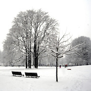 Public garden under the snow in Milan
