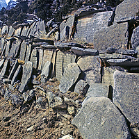 HIMALAYA, NEPAL. Tibetan Buddhist mani stones, carved with prayers and placed in a wall beside a trail in Thame village, Khumbu region.