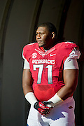 Nov 23, 2012; Fayetteville, AR, USA; Arkansas Razorbacks offensive tackle Jason Peacock (71) waits to be recognized for Senior Day before a game against the Louisiana State Tigers at Donald W. Reynolds Stadium.  LSU defeated Arkansas 20-13. Mandatory Credit: Beth Hall-US PRESSWIRE