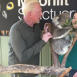 """Boris Becker releases a photo on Instagram with the following caption: """"Never caressed a koala before... #moonlitsanctuary @eurosport"""". Photo Credit: Instagram *** No USA Distribution *** For Editorial Use Only *** Not to be Published in Books or Photo Books ***  Please note: Fees charged by the agency are for the agency's services only, and do not, nor are they intended to, convey to the user any ownership of Copyright or License in the material. The agency does not claim any ownership including but not limited to Copyright or License in the attached material. By publishing this material you expressly agree to indemnify and to hold the agency and its directors, shareholders and employees harmless from any loss, claims, damages, demands, expenses (including legal fees), or any causes of action or allegation against the agency arising out of or connected in any way with publication of the material."""