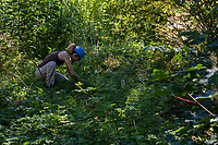 Longfellow Green Space Restoration Work Party