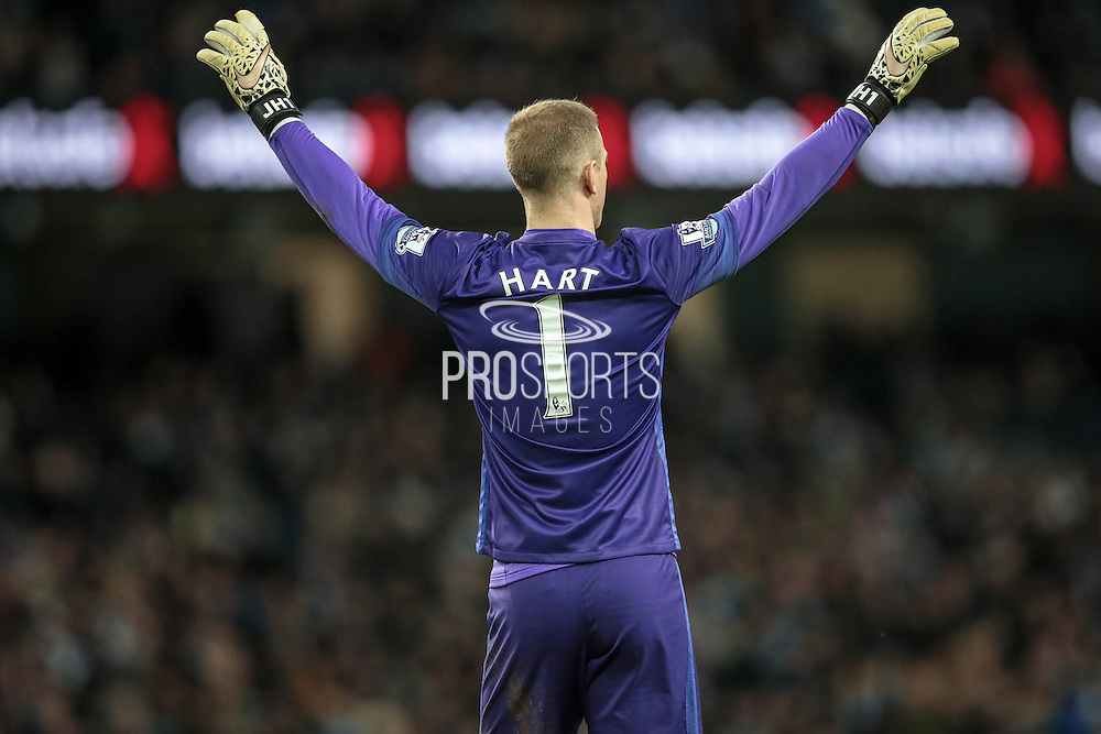 Joe Hart (Manchester City) celebrates the equaliser during the Barclays Premier League match between Manchester City and Tottenham Hotspur at the Etihad Stadium, Manchester, England on 14 February 2016. Photo by Mark P Doherty.