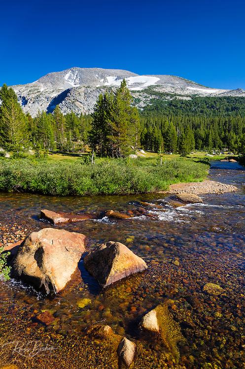Stream in Dana Meadows under Mount Gibbs, Tuolumne Meadows, Yosemite National Park, California USA