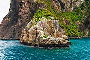 Seal Rock, Milford Sound, Fiordland National Park, South Island, New Zealand
