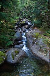Marten Creek, Taylor River Road, Mt. Baker Snoqualmie National Forest, Washington, US
