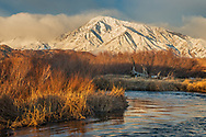 Morning light on a snow-covered Mount Tom in winter over the Owens River near Bishop, Inyo County, Eastern Sierra, California