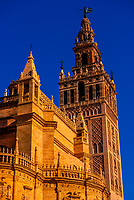 The Seville Cathedral and the Giralda Tower, Seville, Andalusia, Spain.