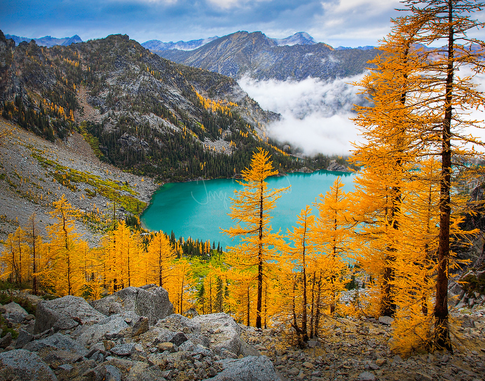 Larch trees at Colchuck Lake in the Enchantment Lakes wilderness