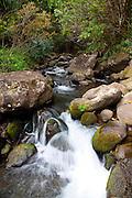 Limahuli Garden and Preserve, Haena, Kauai, Hawaii