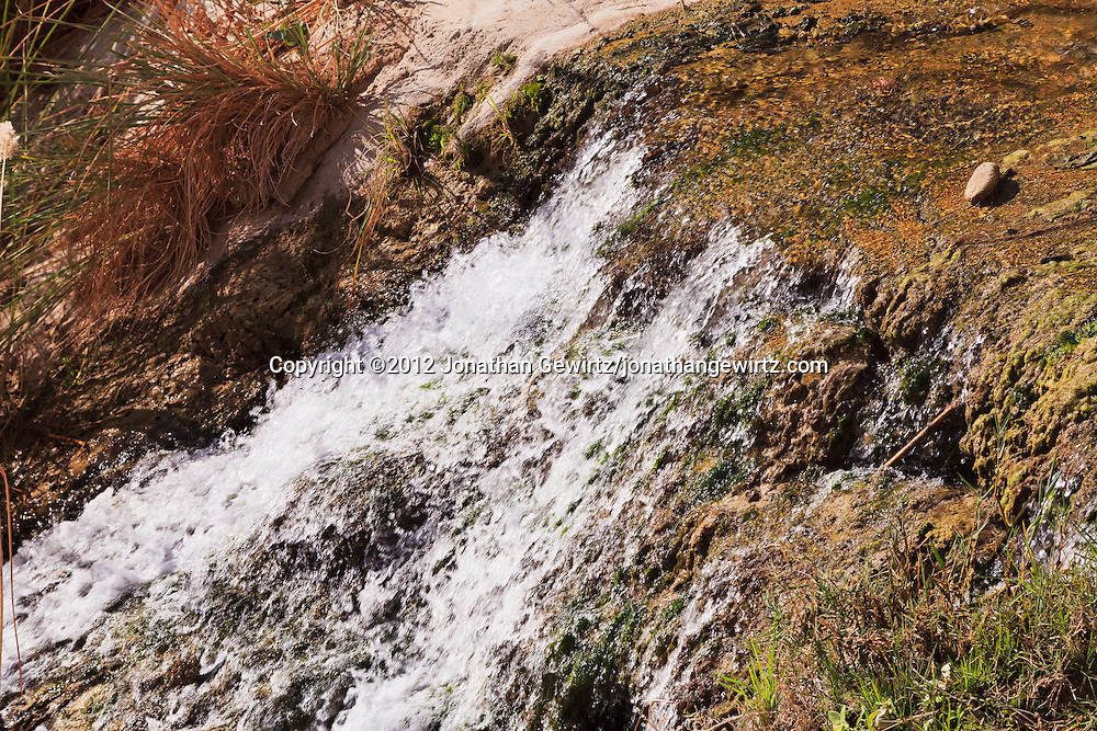 A small turbulent area in Nahal David in the Ein Gedi nature preserve during a low-water period. WATERMARKS WILL NOT APPEAR ON PRINTS OR LICENSED IMAGES.