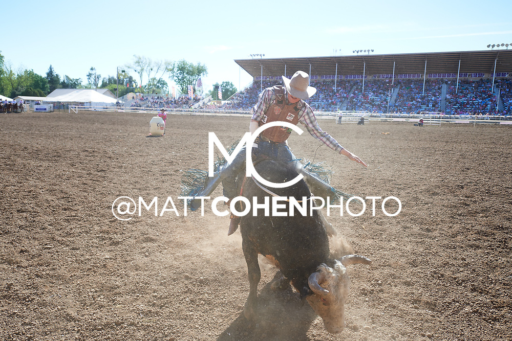 Brady Portenier / 364 Western Madness of Flying U, Red Bluff 2019<br /> <br /> <br />   <br /> <br /> <br /> File shown may be an unedited low resolution version used as a proof only. All prints are 100% guaranteed for quality. Sizes 8x10+ come with a version for personal social media. I am currently not selling downloads for commercial/brand use.