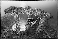Schiffswrack SS Le Polinesien vom Ersten Weltkrieg und Taucher, Schwarzweiss Aufnahme, Shipwreck SS Le Polinesien from first world war and scuba diver, black and white, Malta