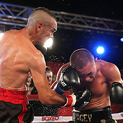 Cosme Rivera (L) punches Sergei Lipinets during a Telemundo Boxeo boxing match at the A La Carte Pavilion on Friday,  March 13, 2015 in Tampa, Florida.  Lipinets won the bout. (AP Photo/Alex Menendez)