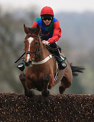 Ballyegan ridden by Sean Houlihan jumps the last fence to win the totepool Merry Christmas Handicap Chase at Towcester Racecourse.