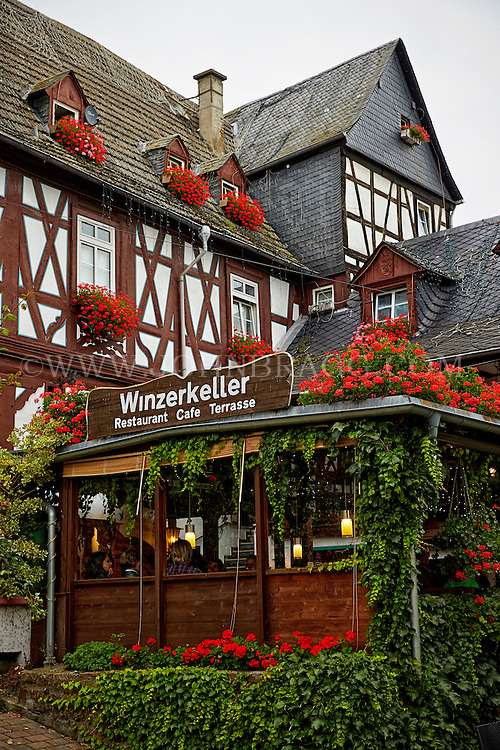 View outside of the Wizerkeller Restaurant and Cafe Terrasse, Rüdesheim, Germany (Vertical).