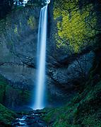 Latourell Falls, Columbia River National Scenic Area, Mount Hood National Forest, Oregon.