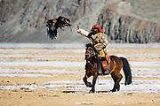 Kazakh eagle hunters competing on horseback with their golden eagles (Aquila chrysaetos) at an eagle festival , Altai Mountains, Bayan Ulgii, Mongolia