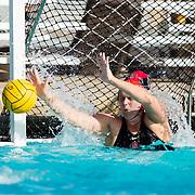 03/28/2019 - Women's Waterpolo v Santa Clara