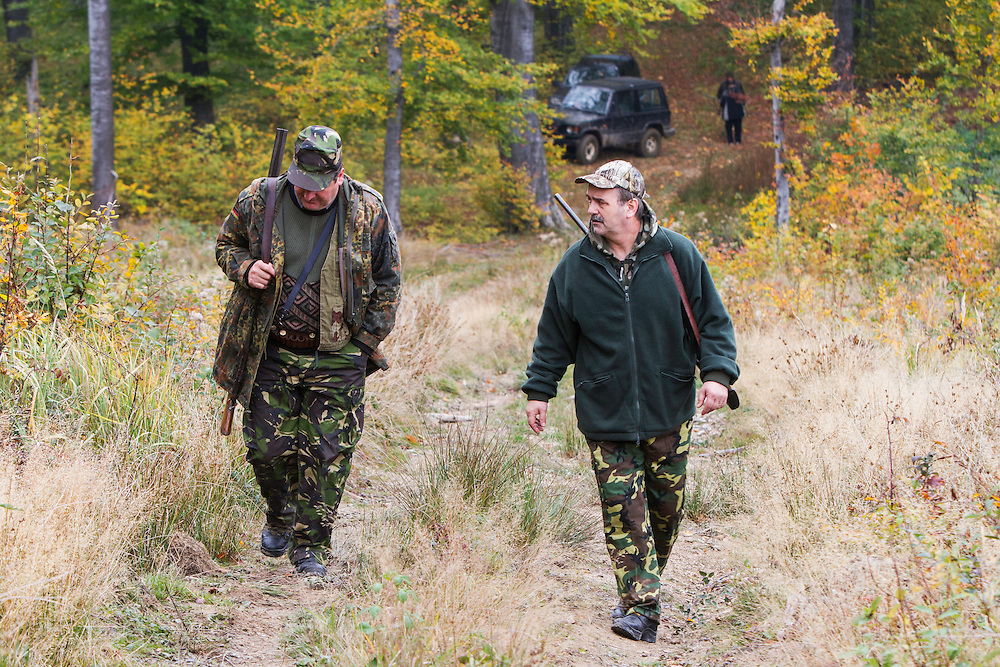 Two Romanian hunters walking to their sooting stands during a driving hunt for Wild boar (Sus scrofa) in the forest area outside the village of Mehadia, Caras Severin, Romania.