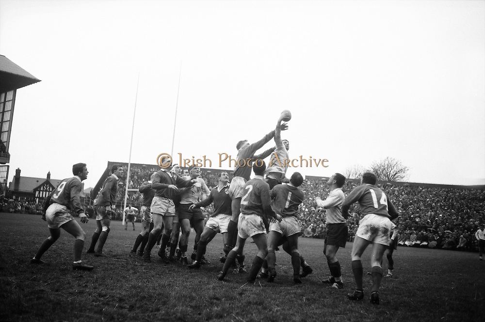 French forward beats four Irish forwards in jump for possession after line out, .Irish, left-right, McLoughlin, McBride 14, Kennedy 2, McHale 1,. .Irish Rugby Football Union, Ireland v France, Five Nations, Landsdowne Road, Dublin, Ireland, Saturday 23rd January, 1965,.23.1.1965, 1.23.1965,..Referee- D G Walters, Welsh Rugby Union, ..Score- Ireland 3 - 3 France, ..Irish Team, ..T J Kiernan,  Wearing number 15 Irish jersey, Full Back, Cork Constitution Rugby Football Club, Cork, Ireland,..P J Casey, Wearing number 14 Irish jersey, Right Wing, Landsdowne Rugby Football Club, Dublin, Ireland, ..J C Walsh,  Wearing number 13 Irish jersey, Right Centre, University college Cork Rugby Football Club, Cork, Ireland,..M K Flynn, Wearing number 12 Irish jersey, Left Centre, Wanderers Rugby Football Club, Dublin, Ireland, ..K J Houston, Wearing number 11 Irish jersey, Left Wing, Bruff Rugby Football Club, Limerick, Ireland, and, Oxford University Rugby Footabll Club, Oxford, England, ..C M H Gibson, Wearing number 10 Irish jersey, Stand Off, Cambridge University Rugby Football Club, Cambridge, England, and, N.I.F.C, Rugby Football Club, Belfast, Northern Ireland, ..R M Young, Wearing number 9 Irish jersey, Scrum Half, Queens University Rugby Football Club, Belfast, Northern Ireland,..S MacHale, Wearing number 1 Irish jersey, Forward, Landsdowne Rugby Football Club, Dublin, Ireland, ..K W Kennedy, Wearing number 2 Irish jersey, Forward, Queens University Rugby Football Club, Belfast, Northern Ireland,..R J McLoughlin, Wearing number 3 Irish jersey, Captain of the Irish team, Forward, Gosforth Rugby Football Club, Newcastle, England, ..W J McBride, Wearing number 4 Irish jersey, Forward, Ballymena Rugby Football Club, Antrim, Northern Ireland,..W A Mulcahy, Wearing number 5 Irish jersey, Forward, Bective Rangers Rugby Football Club, Dublin, Ireland, ..M G Doyle, Wearing number 6 Irish jersey, Forward, University College Dublin Rugby Football Club, Dublin, Ireland,..R A Lamont, We