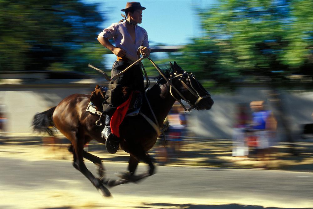 ARGENTINA/ BUENOS AIRES.  Exhibicion de caballo de doma en el barrio de Mataderos...ARGENTINA/ BUENOS AIRES. Horse tame exhibition at Mataderos neighbourhood