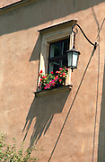 Pink flowers on a window ledge in the old town.  Krakow Poland