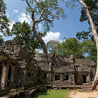 The area around Ta Prohm has changed a lot since my last visit in 2005. Nowadays, a wooden walkway has been installed around the ruins, taking the <br /> charm and authenticity of Ta Prohm away.