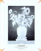 Kodak publication