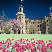 """This is a digital combination of an infrared image and a visible color image.  The color picture is used to colorize the infrared image giving a foreign and new perspective of Blanchard Hall. Wheaton College in Wheaton, IL was founded in 1860.   Wheaton's """"Old Main."""" Blanchard was built in four sections beginning in 1853 and was completed in 1927. Named for Jonathan Blanchard, the College's founder and first president, and his son, Charles Blanchard, the second president, the building is the oldest and most recognized on campus..The building's castle-like architecture was patterned after buildings at Oxford University which Dr. Jonathan Blanchard admired. It is constructed of native Illinois limestone that was quarried in Batavia, Illinois."""